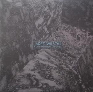 Jared Wilson 'A Little Moonlight Dancing'