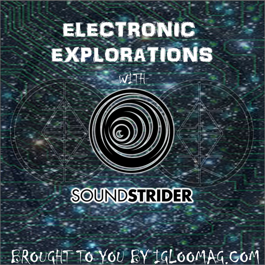 Sound Strider :: Electronic Explorations