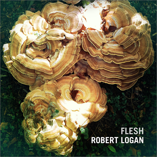 Robert Logan :: Flesh (Slowfoot)