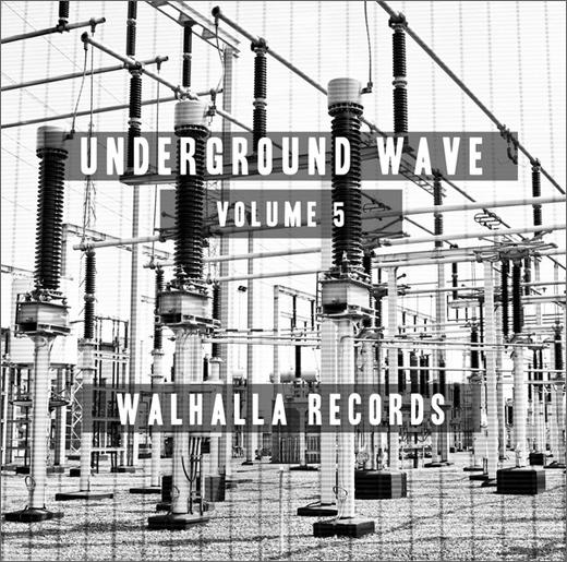 V/A :: Underground Belgian Wave 5 (Walhalla)