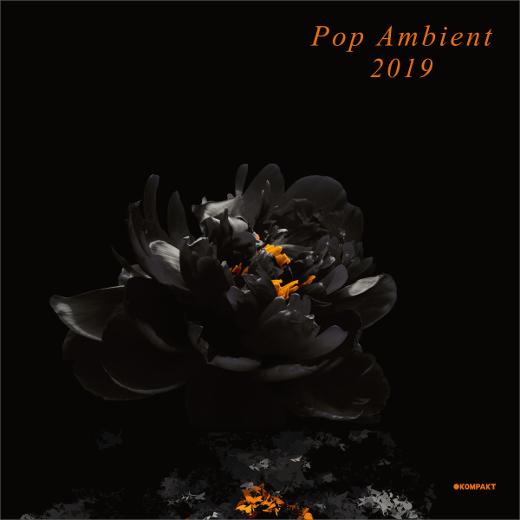 Igloo Magazine :: V/A :: Pop Ambient 2019 (Kompakt)